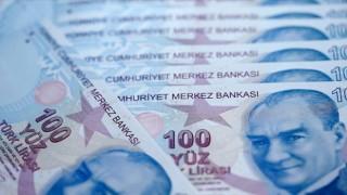 Kamu bankaları Hazine garantisiyle geçen yıl 1 milyar 678 milyon dolar finansman sağladı