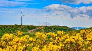 Türkiye'nin enerji haritasında 'yeşil'in payı artıyor
