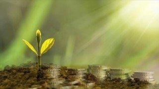 Enerjisa, yeşil mutabakat eylem planına desteğini büyütüyor